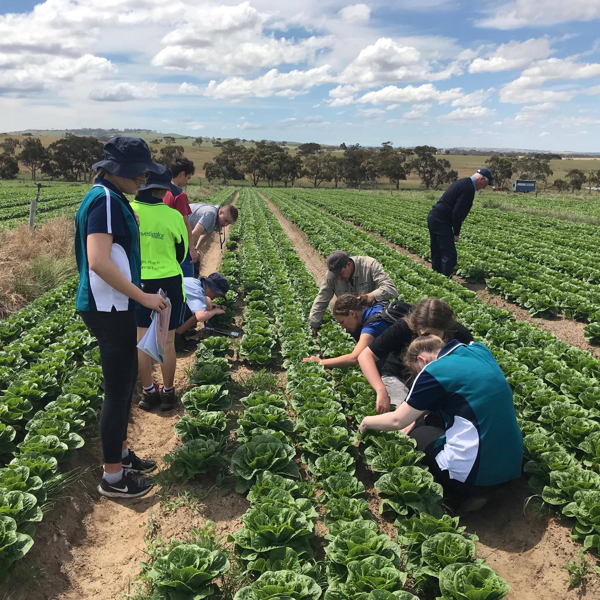 Year 11 Agriculture – Integrated Pest Management