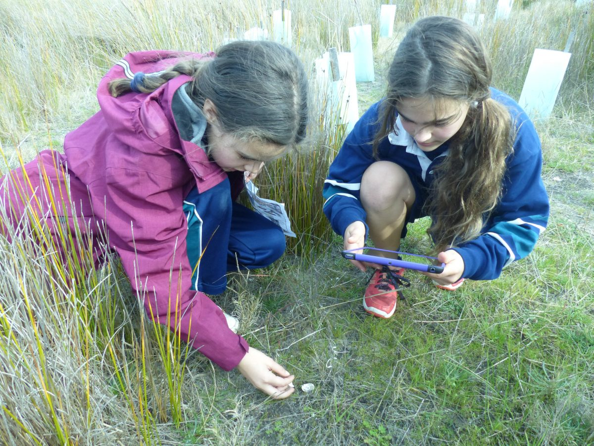 EcoCentre Adventures For The Year 5s