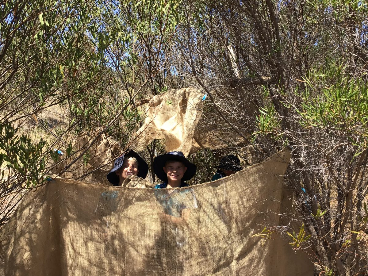 Year 6 EcoCentre Excursions | 2019