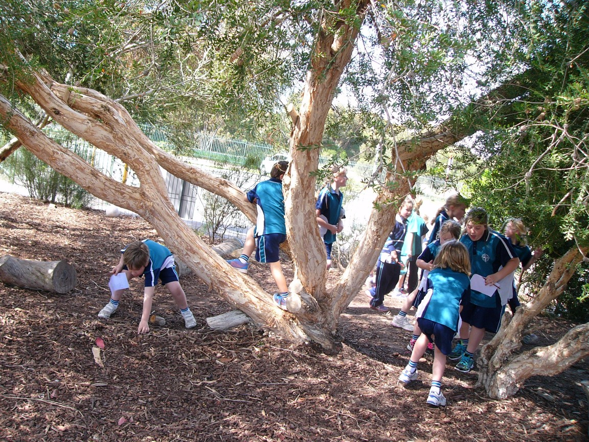 Lunch Time Activities – Goolwa Campus