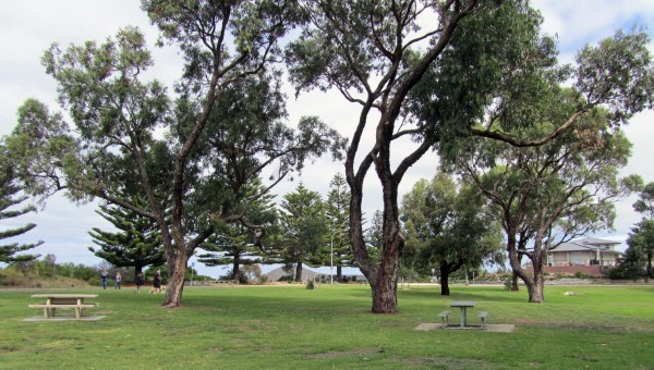 SA Schools Cross Country Championships Victory!