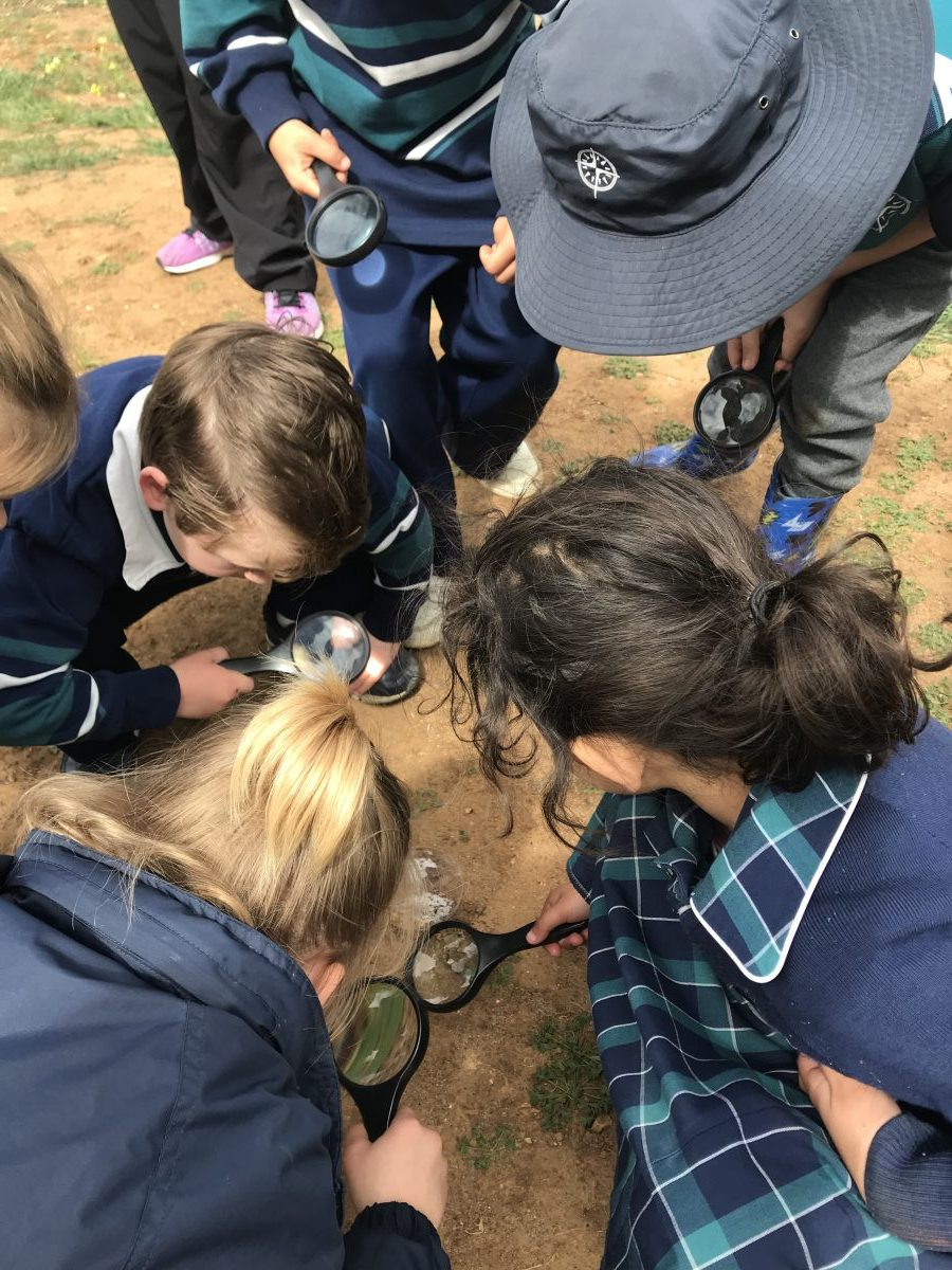 Year 1 Currency Creek Adventures…
