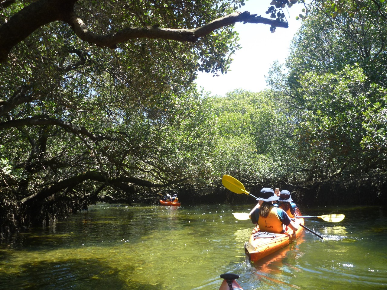 Garden Island Field Trip | Year 9 Geography