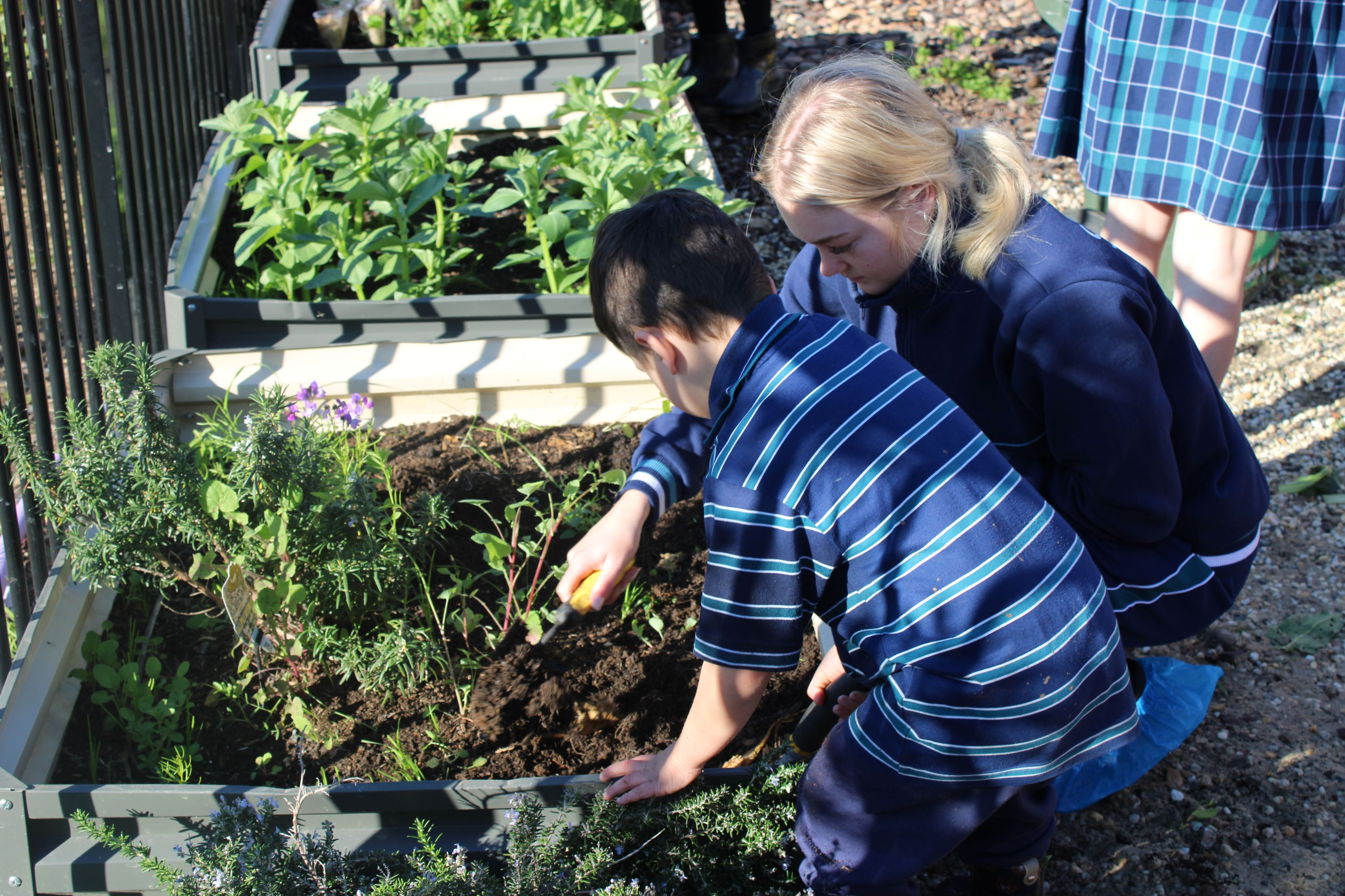Early Learners Centre Update | Term 2 | 2020