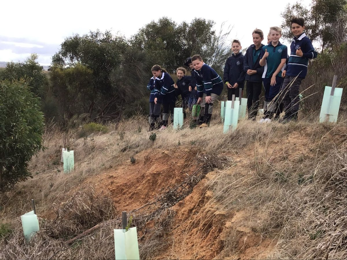 Year 4 Weather and Erosion Excursion   2021